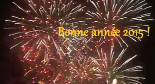 L'équipe d'Actu95 vous souhaite une excellente année 2015